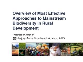 Overview of Most Effective Approaches to Mainstream Biodiversity in Rural Development