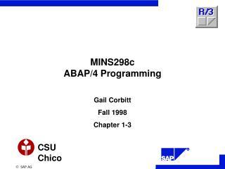 MINS298c ABAP