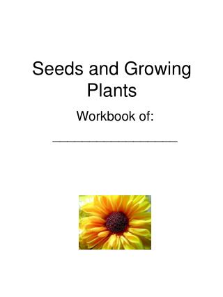 Seeds and Growing Plants