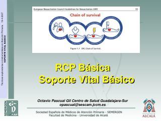 RCP B sica       Soporte Vital B sico