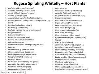 Rugose Spiraling Whitefly   Host Plants