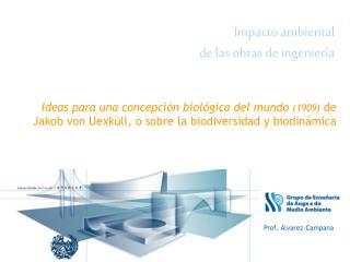 Impacto ambiental  de las obras de ingenier a