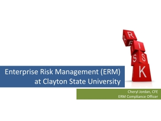Risk Management   Managing Organizational, Enterprise, and System IT Risk