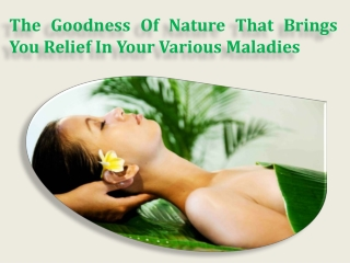 The Goodness Of Nature That Brings You Relief In Your Variou