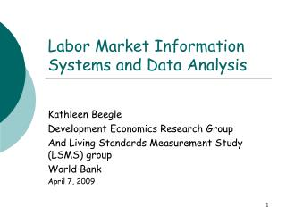 Labor Market Information Systems and Data Analysis