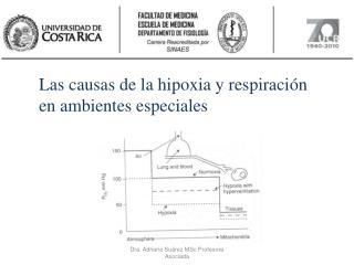 Las causas de la hipoxia y respiraci n en ambientes especiales