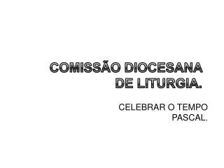 COMISS O DIOCESANA DE LITURGIA.