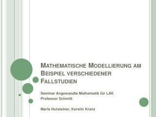 Mathematische Modellierung am Beispiel verschiedener Fallstudien