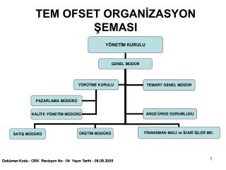 TEM OFSET ORGANIZASYON SEMASI