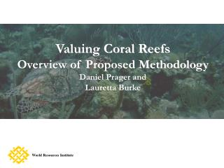 Valuing Coral Reefs Overview of Proposed Methodology Daniel Prager and  Lauretta Burke