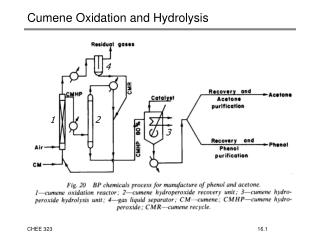 Cumene Oxidation and Hydrolysis