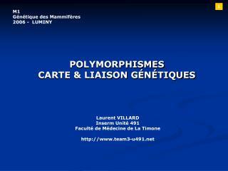 POLYMORPHISMES CARTE  LIAISON G N TIQUES