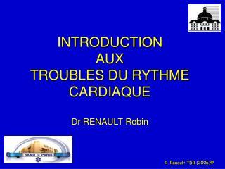 R. Renault TDR 2006