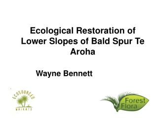 Ecological Restoration of Lower Slopes of Bald Spur Te Aroha