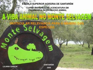 ESCOLA SUPERIOR AGR RIA DE SANTAR M CURSO BIET PICO DE LICENCIATURA EM ENGENHARIA DA PRODU  O ANIMAL