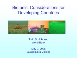 Biofuels: Considerations for Developing Countries