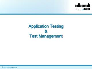 Application Testing  Test Management