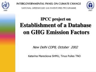 New Delhi COP8, October  2002  Katarina Mareckova SHMU, Tinus Pulles TNO