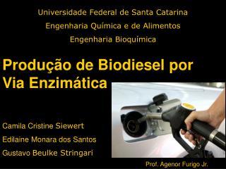 Universidade Federal de Santa Catarina Engenharia Qu mica e de Alimentos Engenharia Bioqu mica