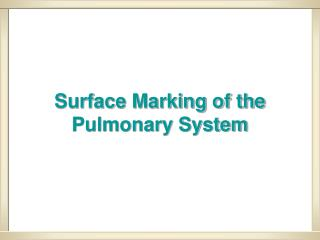 Surface Marking of the Pulmonary System