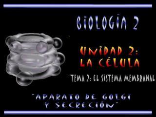 El aparato de golgi, se encuentra localizado en el citoplasma de la c lula