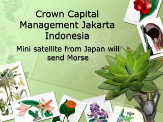 Crown Capital Management Jakarta Indonesia - Mini satellite