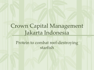 Crown Capital Management Jakarta Indonesia - Protein to comb