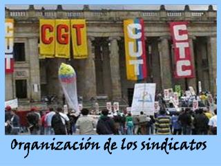 Organizaci n de los sindicatos