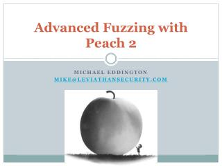 Advanced Fuzzing with Peach 2
