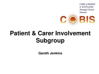 Patient  Carer Involvement Subgroup  Gareth Jenkins