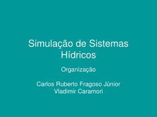Simula  o de Sistemas H dricos