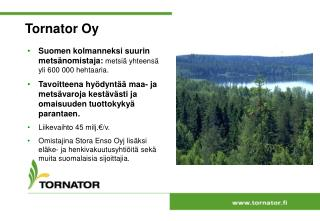 Tornator Oy