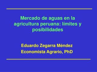 Mercado de aguas en la agricultura peruana: l mites y posibilidades