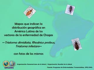 Mapas que indican la  distribuci n geogr fica en  Am rica Latina de los  vectores de la enfermedad de Chagas   Triatoma