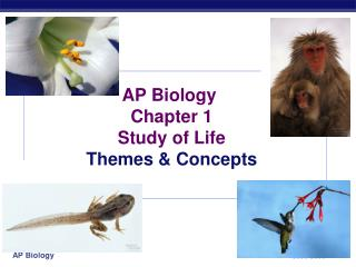 AP Biology  Chapter 1 Study of Life Themes  Concepts