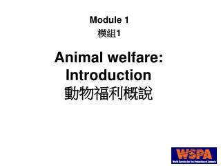 Animal welfare: Introduction