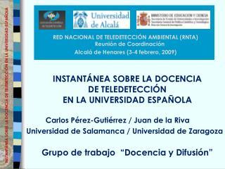 INSTANT NEA SOBRE LA DOCENCIA DE TELEDETECCI N EN LA UNIVERSIDAD ESPA OLA     Grupo de trabajo   Docencia y Difusi n