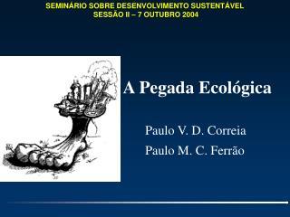 SEMIN RIO SOBRE DESENVOLVIMENTO SUSTENT VEL  SESS O II   7 OUTUBRO 2004