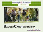 BADGERCARE Overview