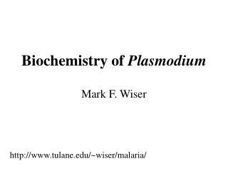 Biochemistry of Plasmodium