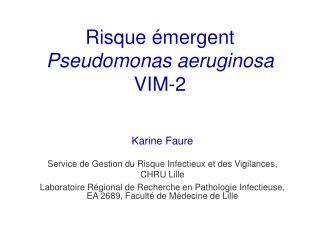 Risque  mergent Pseudomonas aeruginosa VIM-2