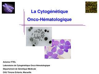 La Cytog n tique Onco-H matologique