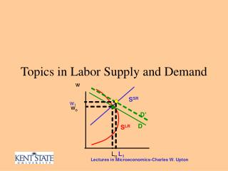 Topics in Labor Supply and Demand