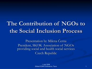 The Contribution of NGOs to the Social Inclusion Process