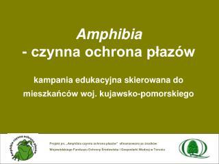 Amphibia  - czynna ochrona plaz w  kampania edukacyjna skierowana do mieszkanc w woj. kujawsko-pomorskiego