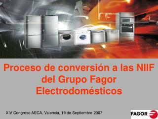 Proceso de conversi n a las NIIF  del Grupo Fagor Electrodom sticos