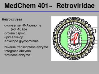 MedChem 401  Retroviridae