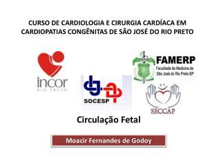 CURSO DE CARDIOLOGIA E CIRURGIA CARD ACA EM CARDIOPATIAS CONG NITAS DE S O JOS  DO RIO PRETO