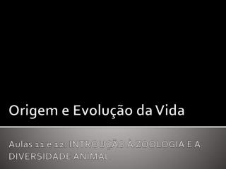 Origem e Evolu  o da Vida  Aulas 11 e 12: INTROU  O   ZOOLOGIA E   DIVERSIDADE ANIMAL