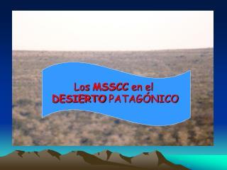 Los MSSCC en el  DESIERTO PATAG NICO